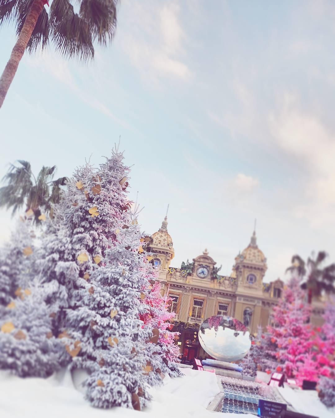 Palms amp pines in Monte Carlo pinkunicornsvibes   hellip